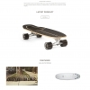 carverskateboards.com